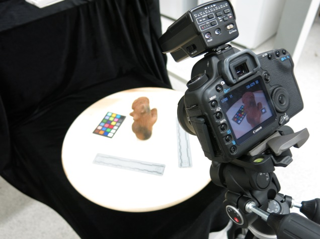 Imaging setup for visible light photography and photogrammetry.