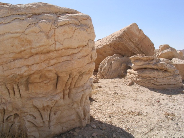 A weathered capital returns to the sand.